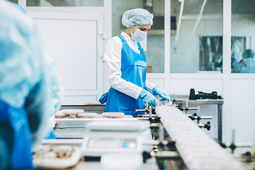 disposable clothing for Food Processing and Handling